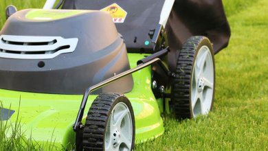 Photo of The Best Mulching Lawn Mower
